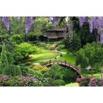 ФОТОобои 294*201см Китайский парк 9л