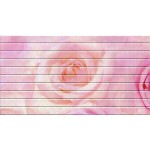 Мозаика №24 1000*500мм Роза Панель ПВХ