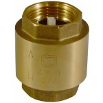 "Обратный клапан 1"" CTM пластик CBCV0001"