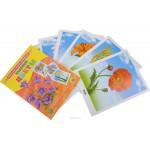 Обучающие карточки Цветы садовые 16шт. 1262704