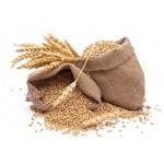 Пшеница 30 кг/2017/