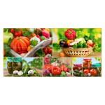 Мозайка ПВХ Плитка Щедрый урожай 955*480