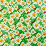 Клеенка Колорит тк 430-3 /1,26м*25м/ зеленый