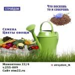 СЕМЕНА АКЦИЯ б/п 3,00р